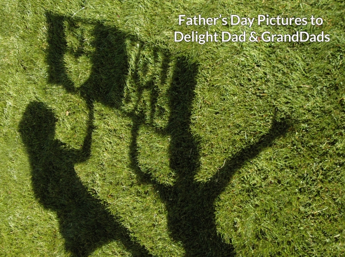 fathers day top image